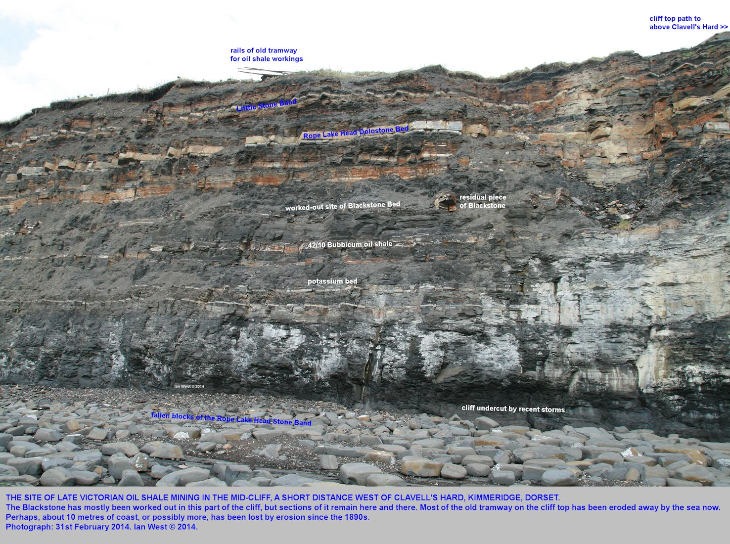 Worked-out Kimmeridge Oil Shale or Blackstone in the cliffs, a short distance west of Clavell's Hard, Kimmeridge, Dorset, 31st February 2014