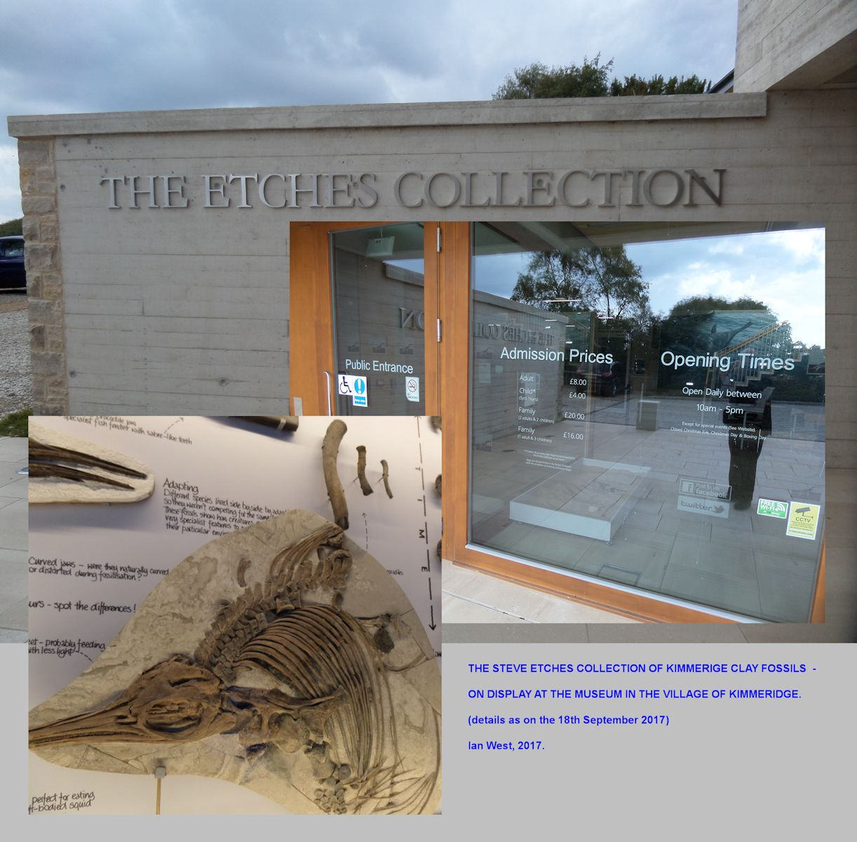 The Steve Etches Museum, Kimmeridge, Dorset, with many remains of Ichthyosaurs and other fossil, collected by Steve Etches from the Kimmeridge Clay Formation