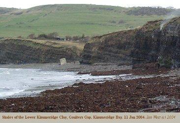 Gaulters Gap in central  Kimmeridge Bay, Dorset