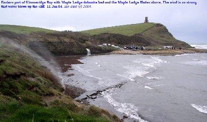 Maple Ledge and eastern  Kimmeridge Bay, Dorset