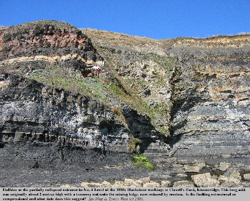The old No. 4 Level for oil shale at the Clavell's Hard Mining Ledge, Kimmeridge, Dorset
