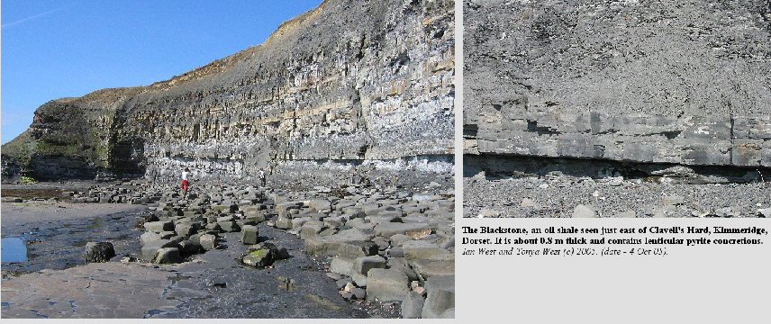 The Blackstone, oil shale, east of Clavell's Hard, Kimmeridge, Dorset