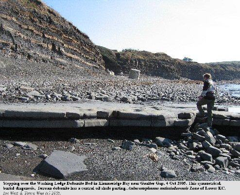 Burial diagenesis dolomite, the Washing Ledge Dolomite Bed, near Gaulter Gap, Kimmeridge Bay, Dorset, on 4 October 2005