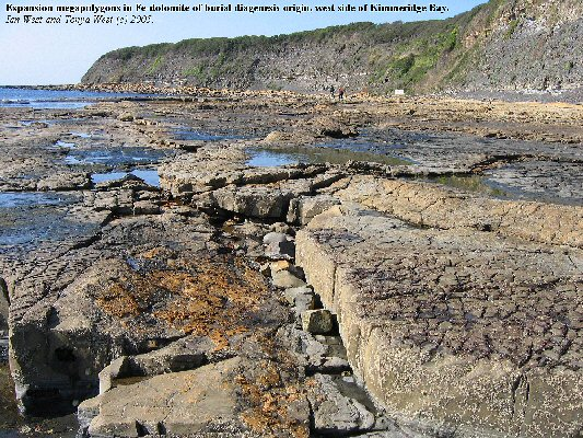 Expansion megapolygons in dolomite of burial diagenesis origin, the Flats Dolomite Bed, Kimmeridge Bay, Dorset, England