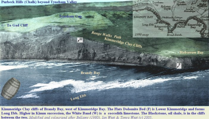 Aerial view of Brandy Bay, Kimmeridge, Dorset