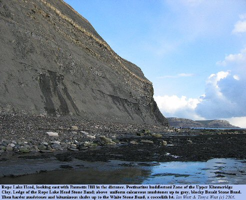 The cliff at Rope Lake Head, east of Kimmeridge Bay, Dorset, with hudlestoni Zone, Upper Kimmeridge Clay, March 2006