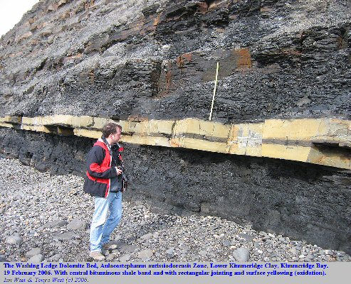 The Washing Ledge Dolomite Bed with central parting of bituminous shale, Lower Kimmeridge Clay, Kimmeridge Bay, Dorset