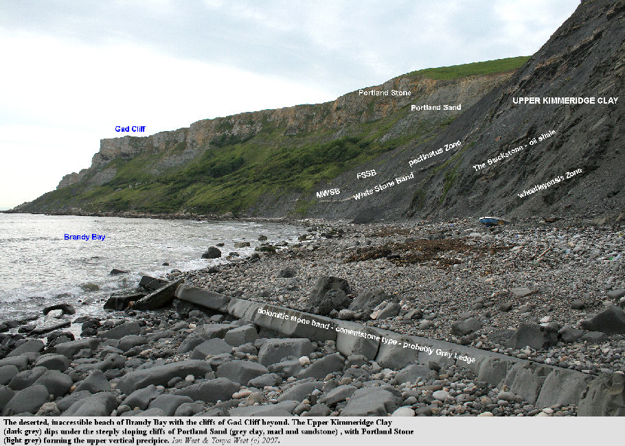 View from the shore of the northwestern part of Brandy Bay, showing Gad Cliff, west of Kimmeridge Bay, Dorset, 2007 - labelled version