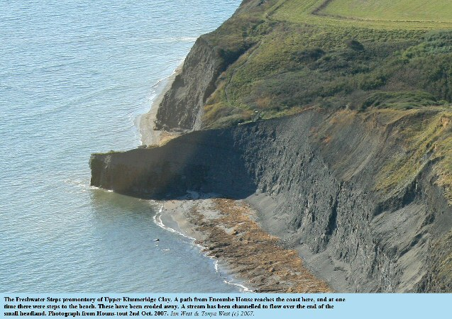 The Freshwater Steps Promontory, east of Kimmeridge Bay, Dorset, seen from Houns-tout, 2007