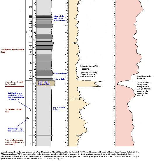 Some details of the succession around Grey Ledge, Upper Kimmeridge Clay, east of Kimmeridge Bay, Dorset