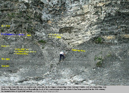 Grey Ledge Dolomite Bed, once worked for cement, near Cuddle, east of Kimmeridge Bay, Dorset