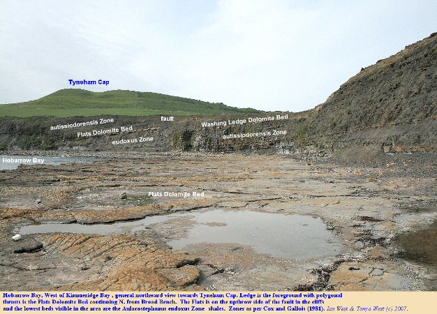 General view of Lower Kimmeridge Clay at Hobarrow Bay, west of Kimmeridge Bay, Dorset