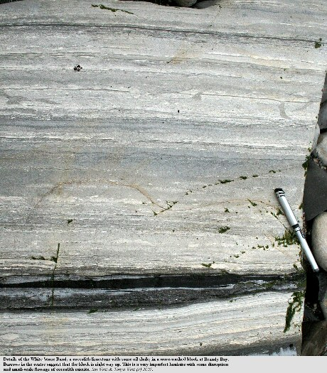 Details of the imperfect lamination in the coccolith laminite, the White Stone Band of Brandy Bay, west of Kimmeridge Bay, Dorset
