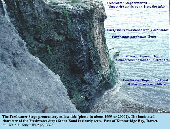 Details of the Freshwater Steps promontory, east of Kimmeridge Bay, Dorset, photograph of 1999 or 2000