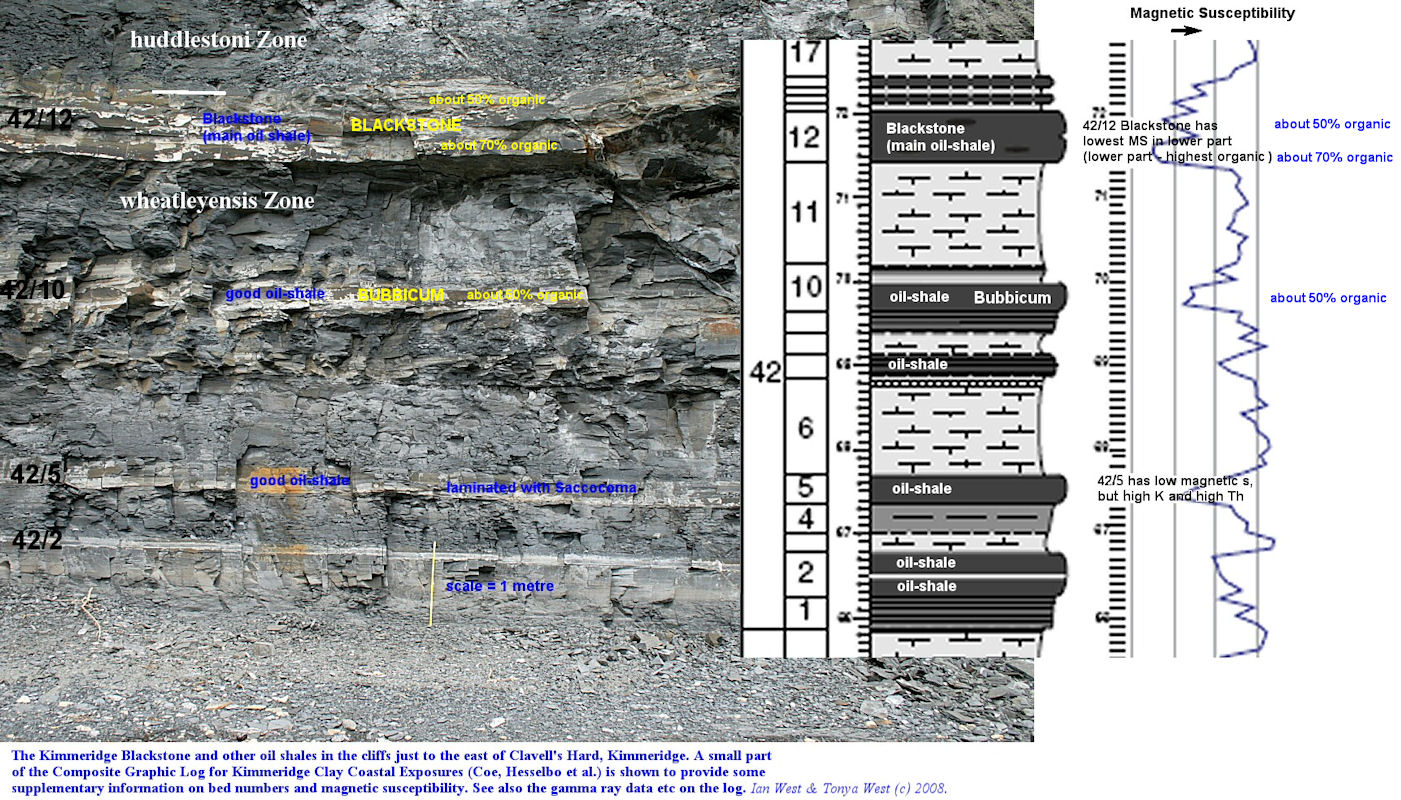 Details of the Kimmeridge Blackstone and underlying oil shales, east of Clavell's Hard, Dorset, with reference to Coe's Log