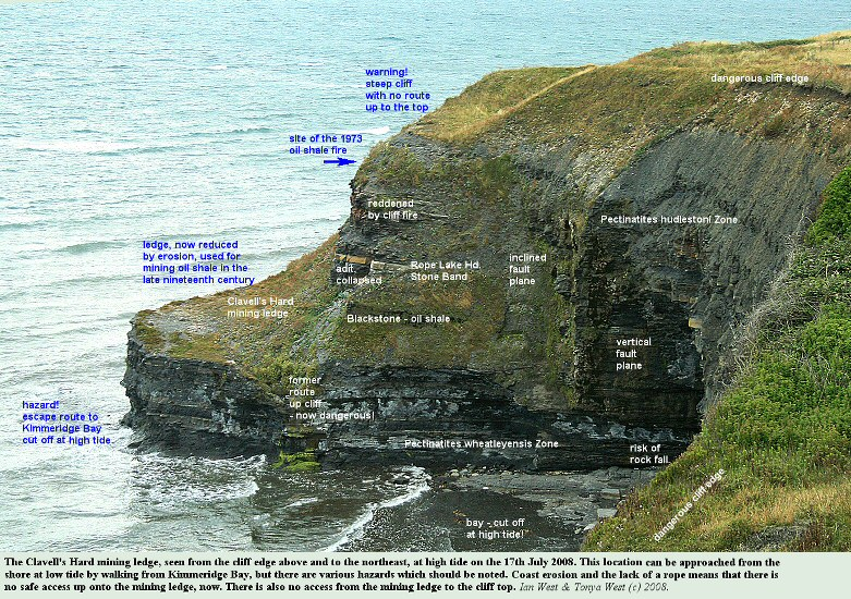 Clavell's Hard mining ledge, east of Kimmeridge, Dorset, seen from the cliff edge to the NE, 18th July 2008
