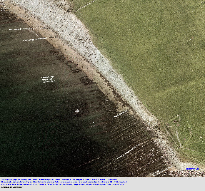 Large scale, aerial photograph of Brandy Bay, immediately north of Long Ebb, Kimmeridge, Dorset - labelled version