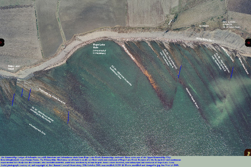 Kimmeridge Ledges, of dolomite, limestone and bituminous shale, seen in an aerial photograph of the coast east of Rope Lake Head, Dorset, courtesy of the Channel Coastal Observatory, 2003