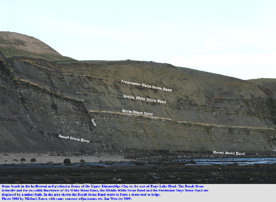 Fault displacement of the Basalt Stone dolomite bed, the White Stone Band, the Middle White Stone Band and the Freshwater Steps Stone Band, east of Rope Lake Head, near Kimmeridge, Dorset, 2006