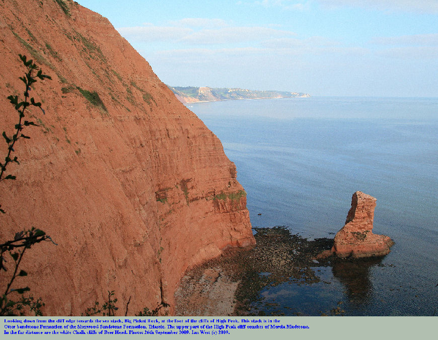 Big Picket Rock, a sea stack of Otter Sandstone, Triassic,, between Sidmouth and Ladram Bay, East Devon