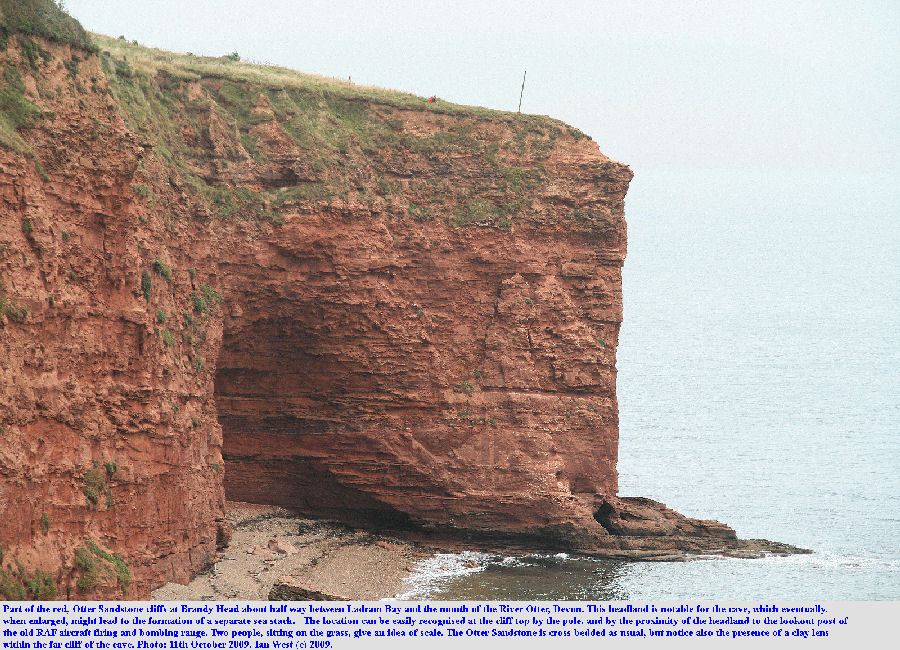 Brandy Head, composed of Otter Sandstone, about halfway between Ladram Bay and the mouth of the Otter, East Devon, October 2009