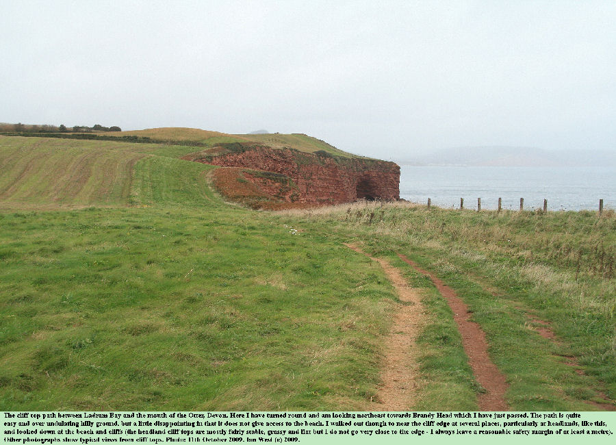The cliff top path between Ladram Bay and the mouth of the River Otter, East Devon