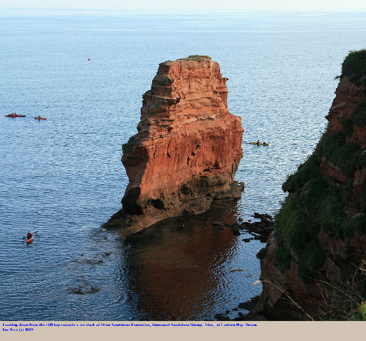 A sea stack of Otter Sandstone near Ladram Bay, East Devon