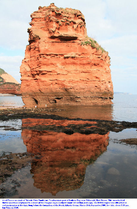 A red Devon rock - a sea stack of Triassic Otter Sandstone, Ladram Bay, East Devon, southern England