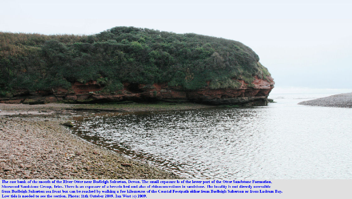 Exposure of the lower part of the Otter Sandstone Formation, Sherwood Sandstone Group, Trias, east of the mouth of the River Otter, near Budleigh Salterton, East Devon