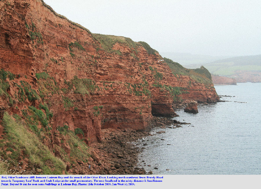 View from Brandy Head north-northeast towards Twopenny Loaf Rock and Crab Ledge, near Ladram Bay, East Devon