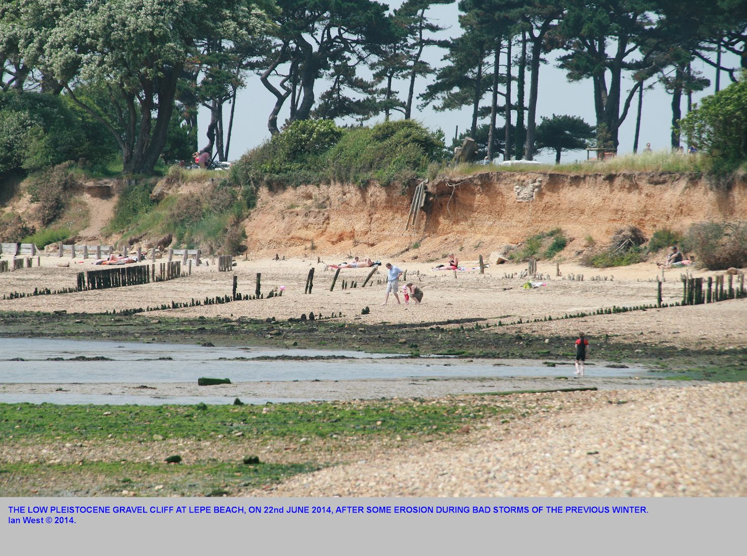 Pleistocene gravel cliff at central to east Lepe Beach, Hampshire, seen in June 2014, after storms from the previous winter have caused significant erosion