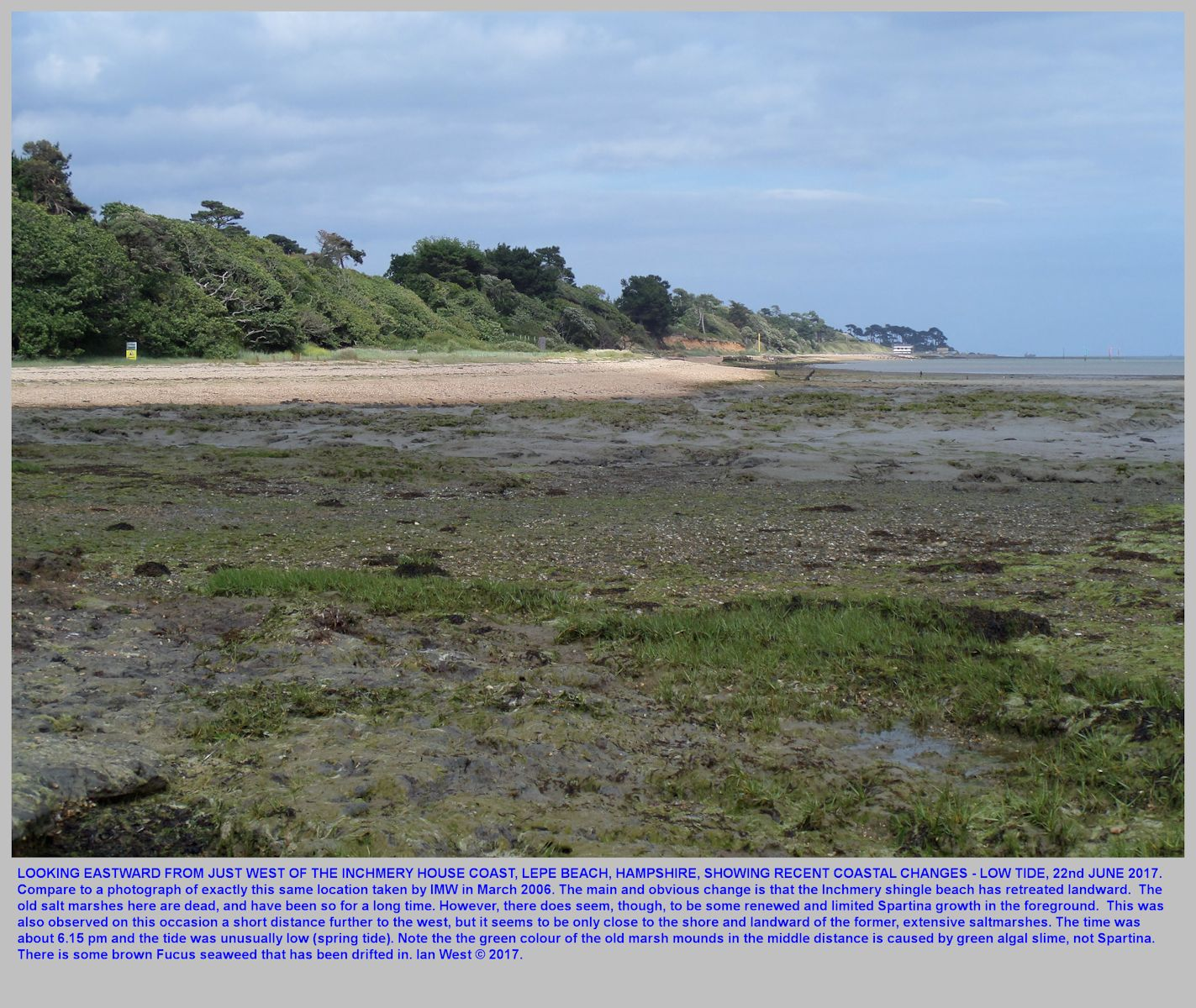 Looking eastward at the now-depleted, Inchmery Shingle Beach, near Lepe Beach, Hampshire, 22nd June 2017