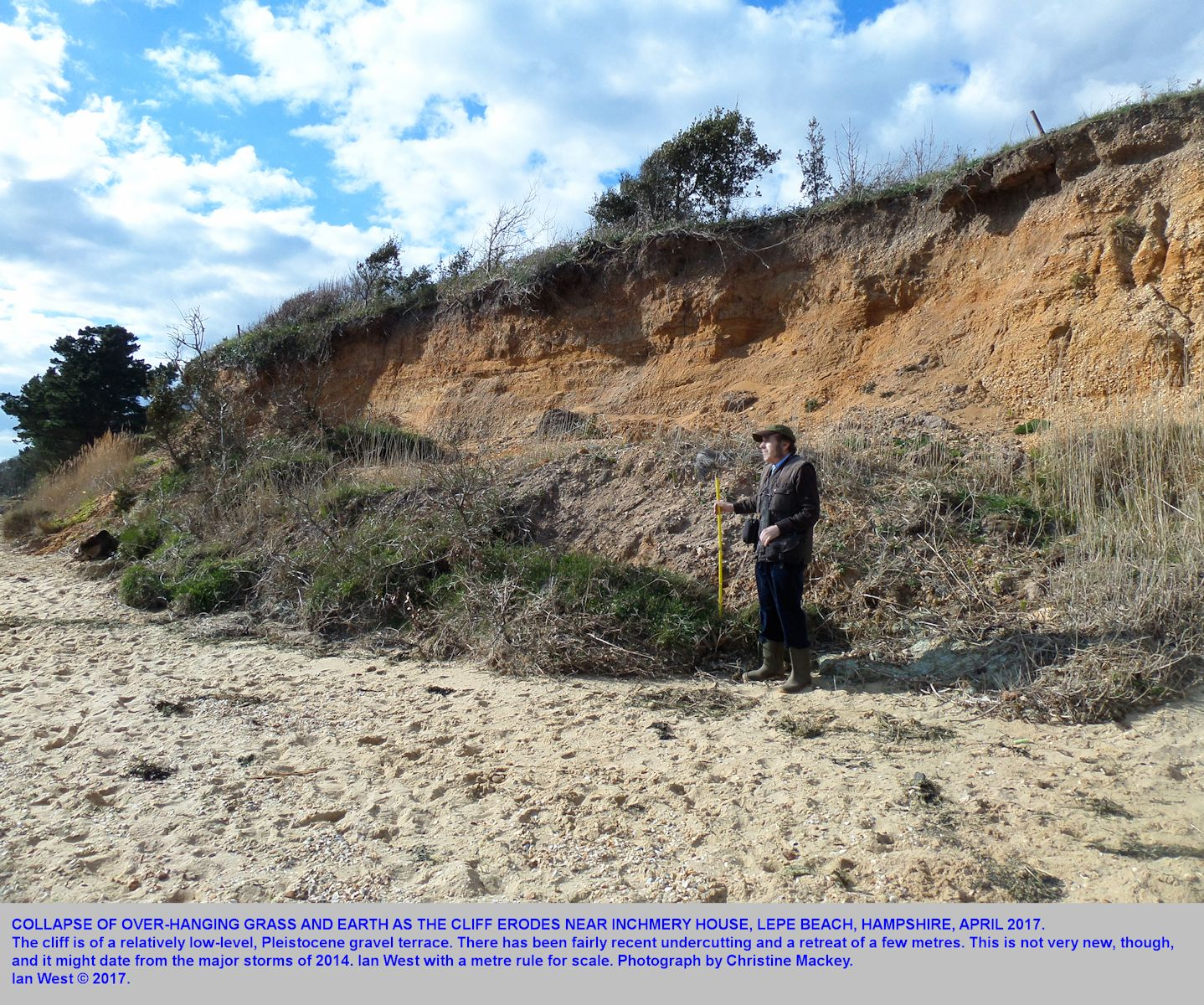 Grass and soil have fallen from the low cliff near Inchmery House, Lepe Beach, Hampshire, with Ian West in the picture