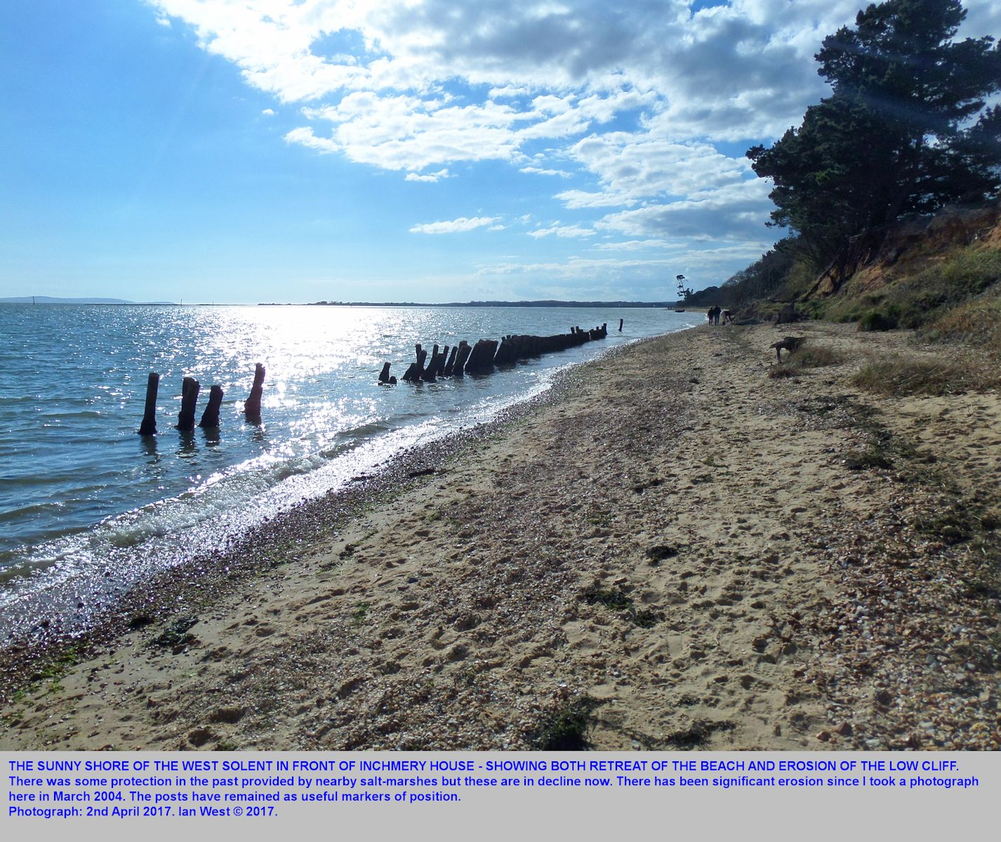 The coast near Inchmery House, east of Lepe Beach, Hampshire, as seen on the 16th April 2017, with a marked increase in erosion since 2004