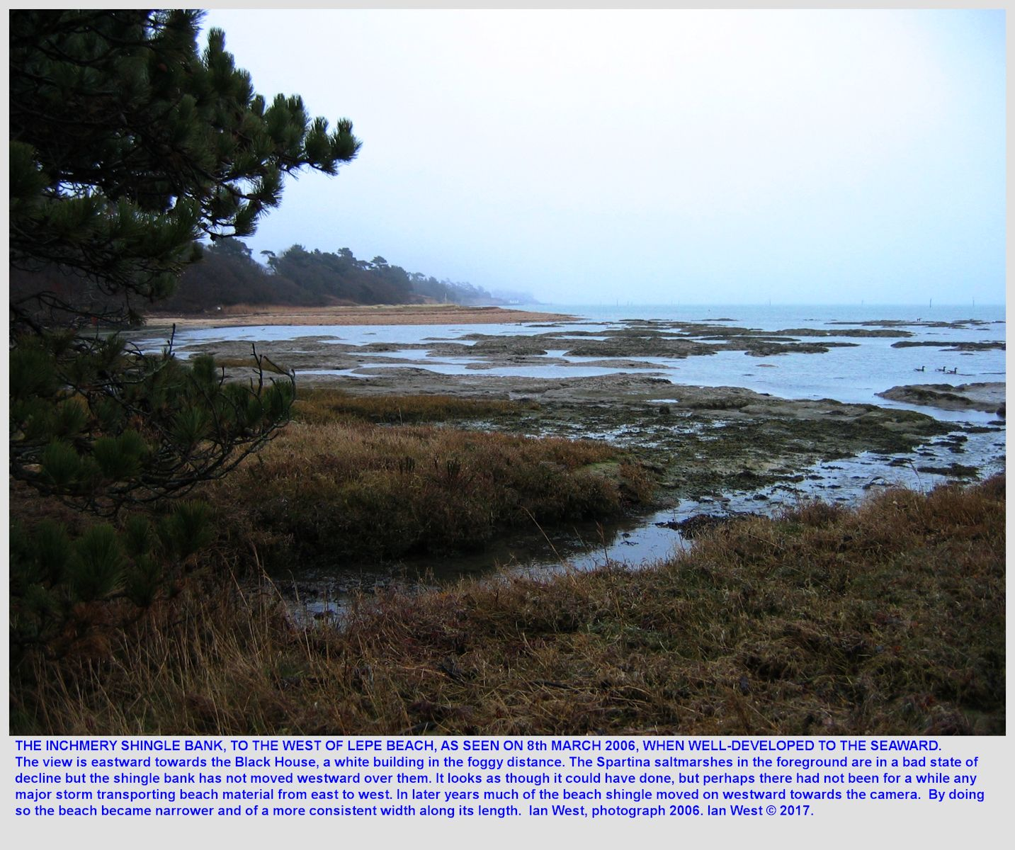 The shingle bank in front of Inchmery House, near Lepe Beach, Hampshire, as seen in 2006 with the eroded remains of Spartina saltmarshes, middle-distance view towards the east