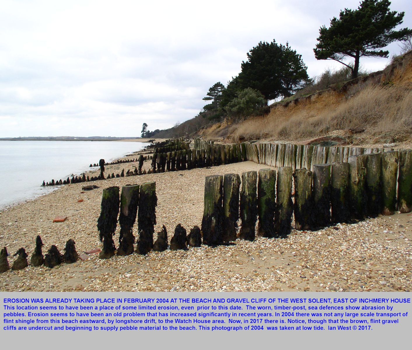 An old photograph of 2004, showing eroded sea-defences of posts at low tide, east of Inchmery, near Lepe Beach