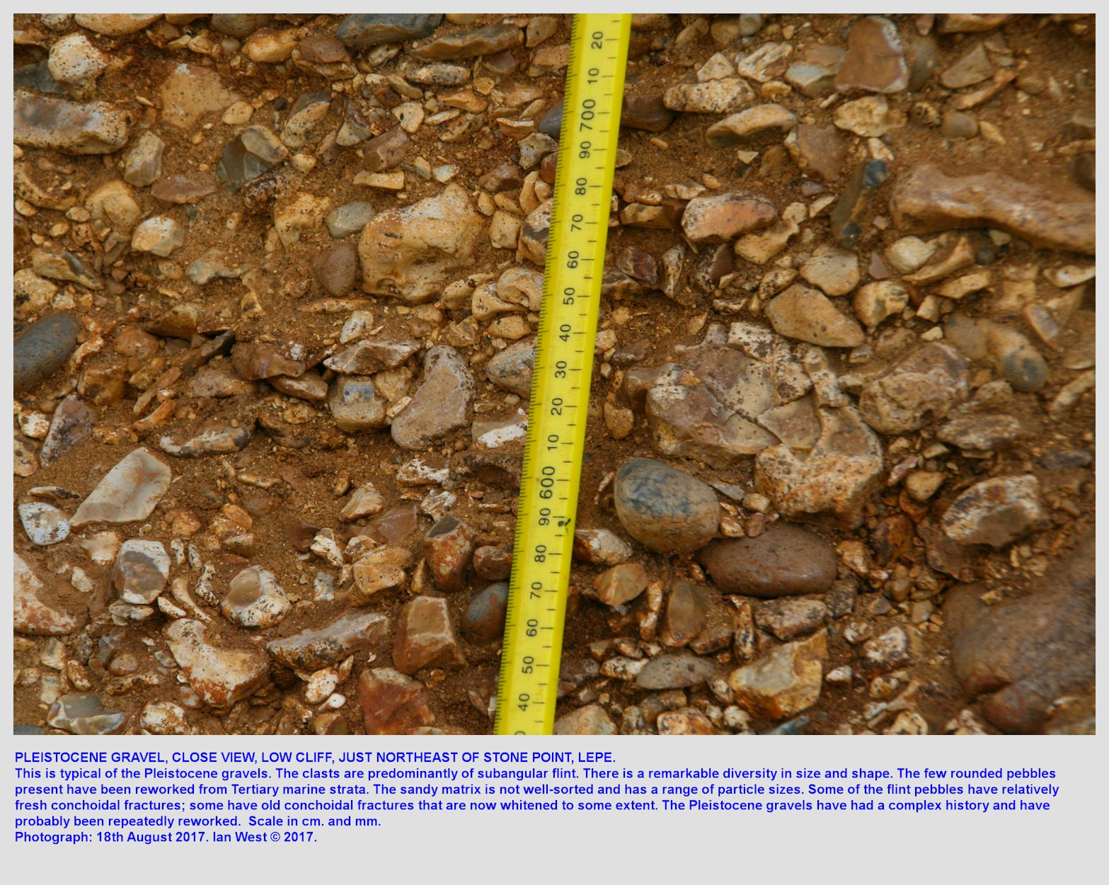 Pleistocene gravel, Lepe Beach, Hampshire, east of the beach car park and below the Country Park area, 18th August 2017