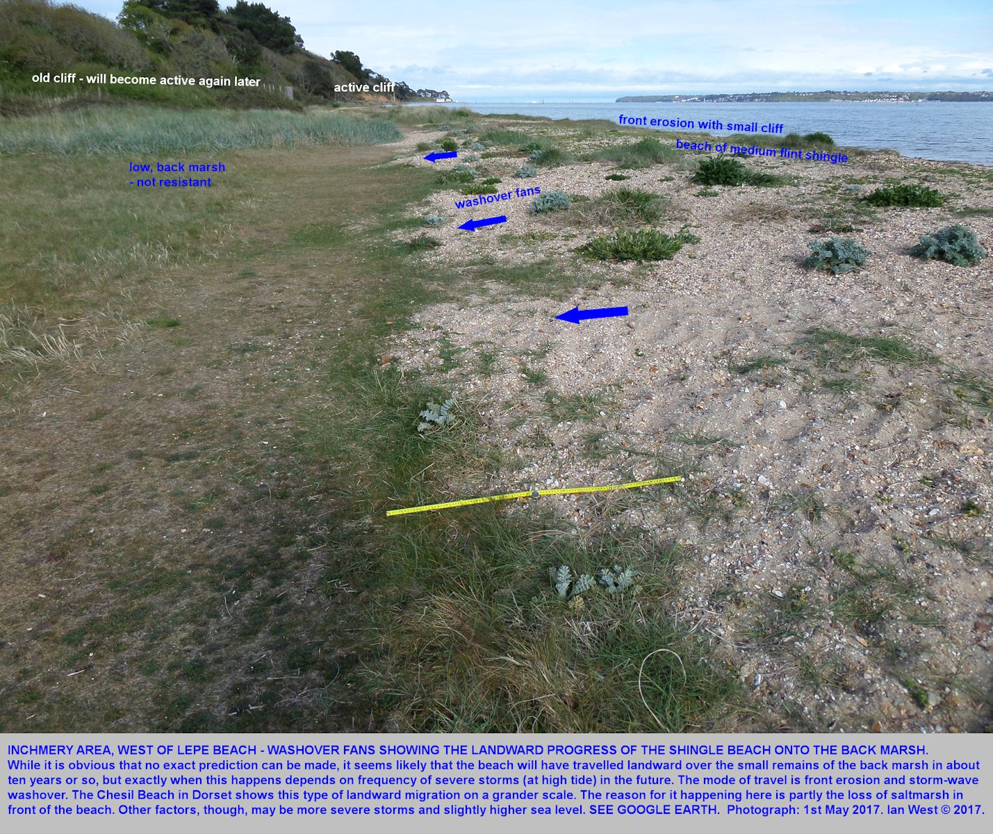 Small washover fans developed as the shingle beach retreats landwards over a small marsh at Inchmery House, west of Lepe Beach, Hampshire, 1st May 2017