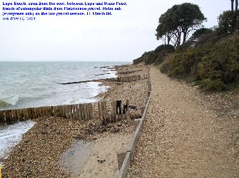 View from just east of Lepe Beach, Hampshire