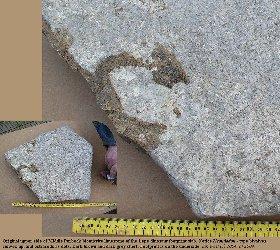 Original upper surface of the slab with a dinosaur footprint, Lepe Beach, Hampshire