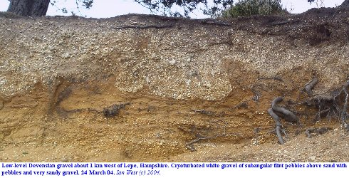Thermokarstic, cryoturbated Devensian gravel about 1km west of Lepe, Hampshire