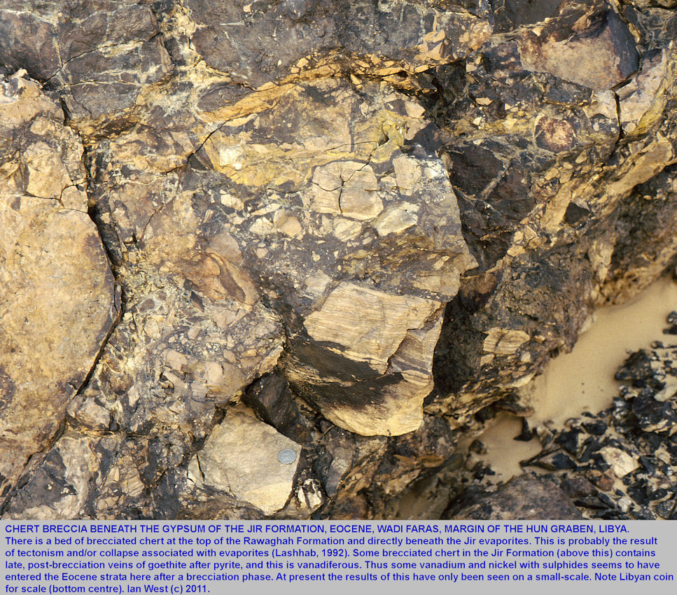 Brecciated chert beneath the Eocene, Wadi Faras evaporites, margin of Hun Graben, Libya