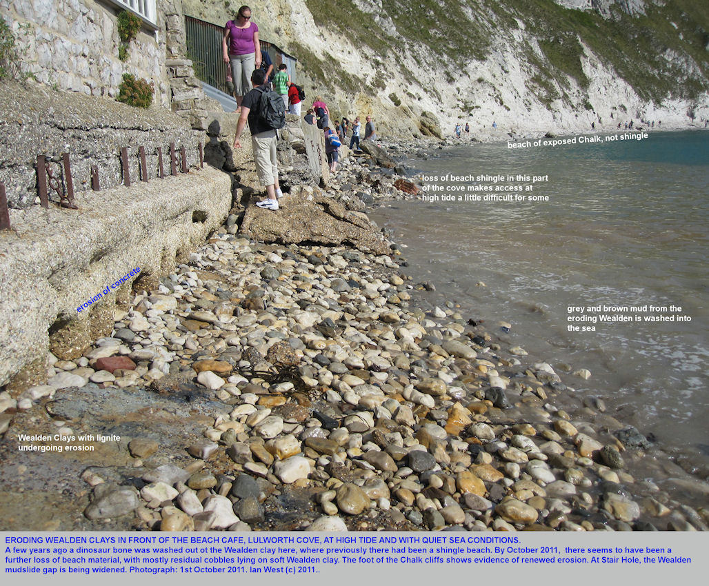 Wealden exposure and erosion in front of the beach cafe at Lulworth Cove, Dorset, October 2011