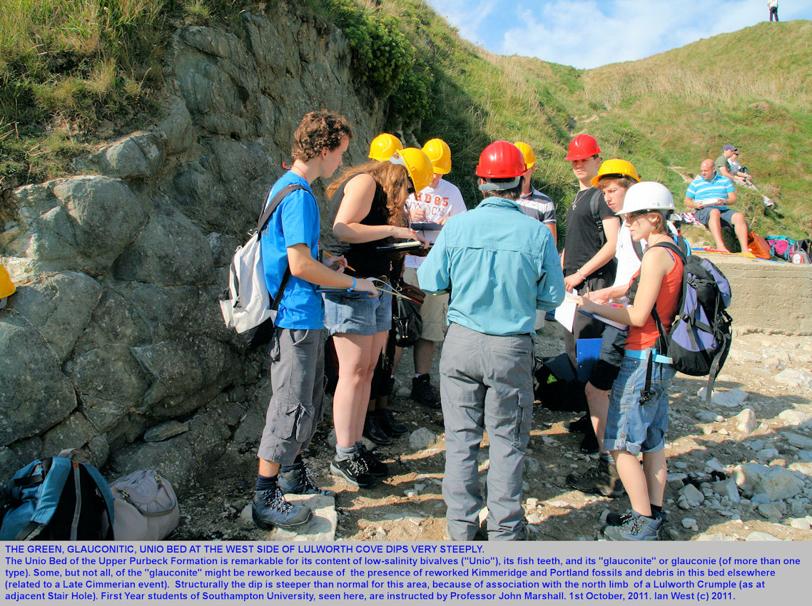 The steeply-dipping Unio Bed, west side of Lulworth Cove, Dorset, with Southampton University students, October 2011