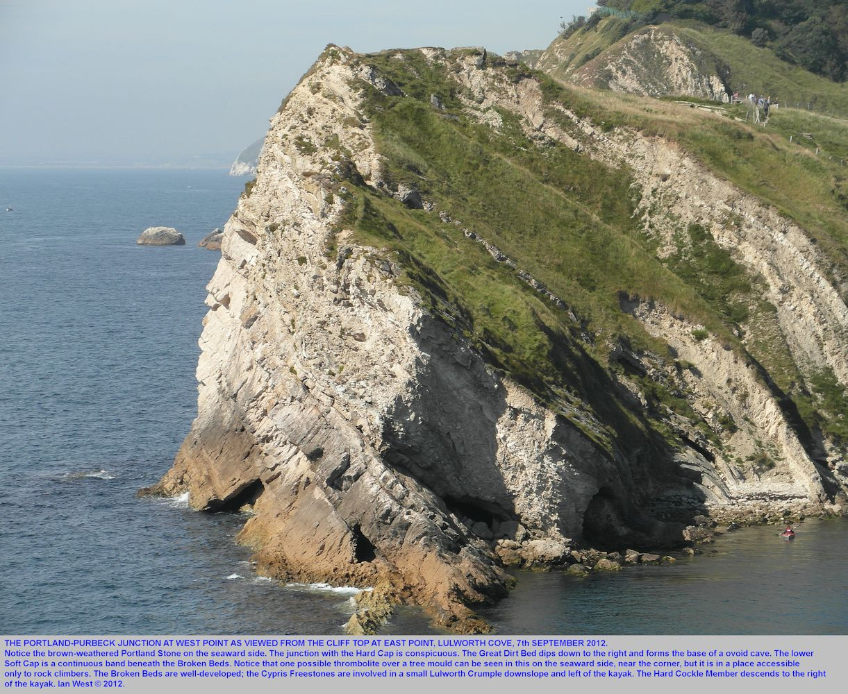West Point, Lulworth Cove, Dorset, details of Purbeck strata, 8th September 2012