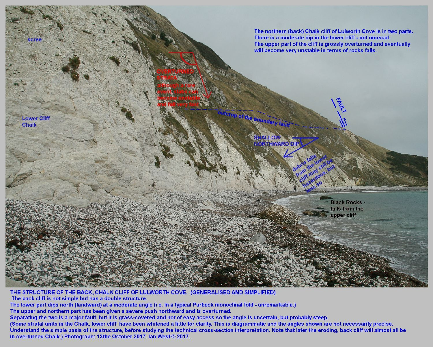 The changes in dip on either side of the steep fault in the back cliff of Lulworth Cove, Dorset, and some relationship to occasional rock falls