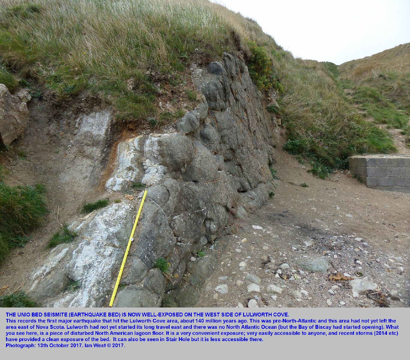 The seismite, or earthquake bed, in the Unio Member of the Upper Purbeck strata at the west side of Lulworth Cove, Dorset, an overview, 13th October, 2017