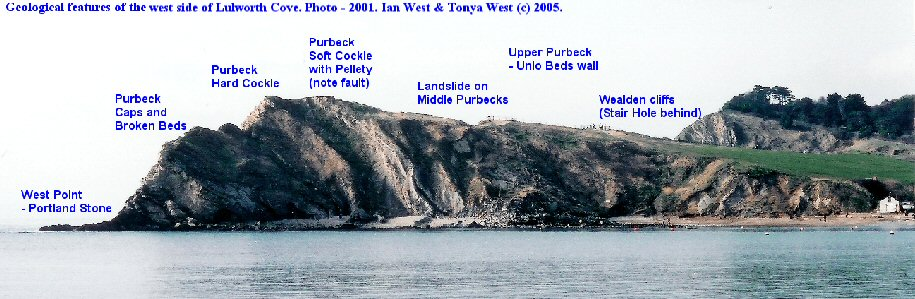 General geological features of the west side of Lulworth Cove, Dorset, as seen in 2001.