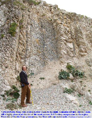 Sheared Plenus Marl at the west side of the promontory of Durdle Door, near Lulworth Cove, Dorset, 2005, with Ian West