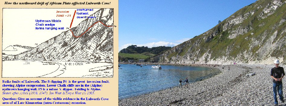 The great inversion fault in the Chalk cliffs of Lulworth Cove, Dorset, England